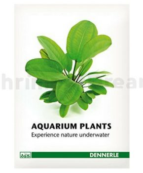 Dennerle Guide Aquarium Plants (Italiano)