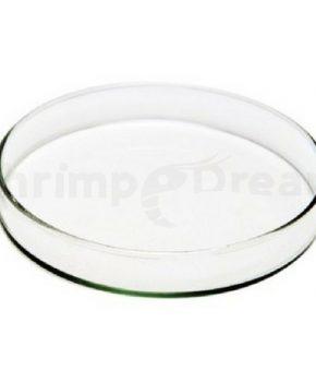 Prato de vidro