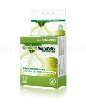 Dennerle Deponit NutriBalls, 10 Unid.