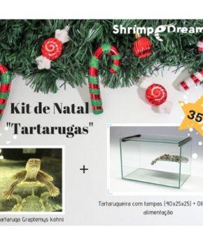 "Kit de Natal ""Tartarugas"""